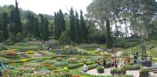 Chiang-Rai