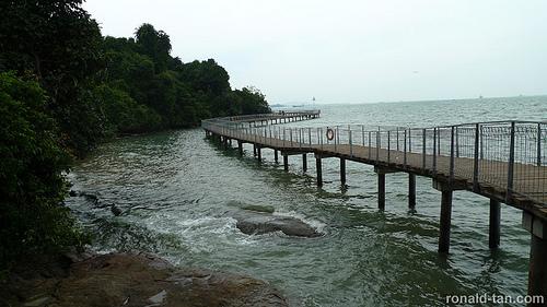 Pulau-Ubin