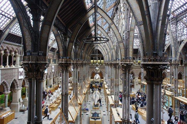 Oxford university museum interior