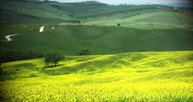 Toscana Val d'Orcia