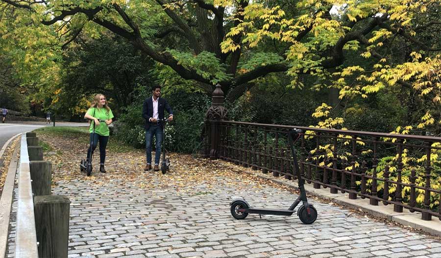 Tour Central Park