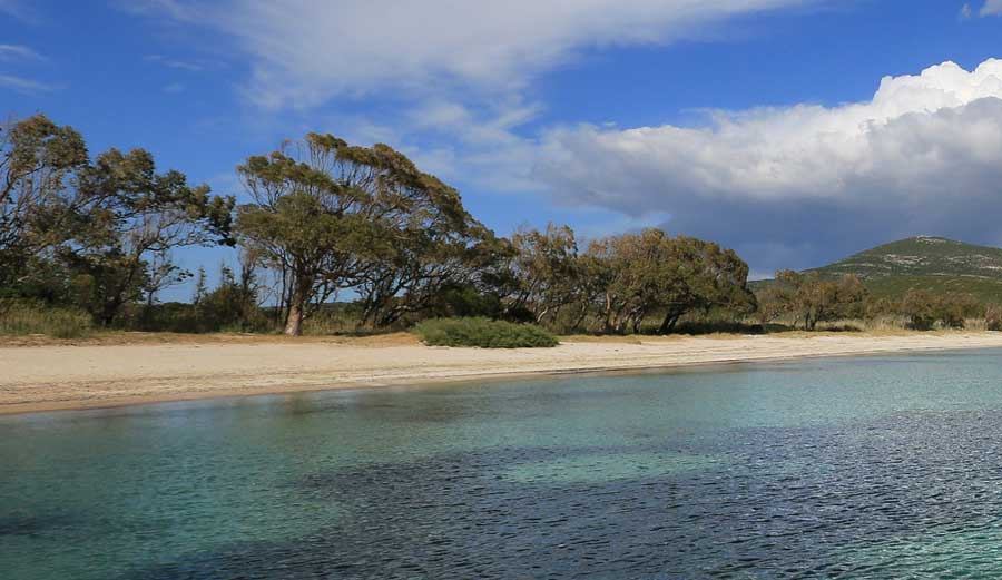 Spiagge Vicino Alghero: Mugoni
